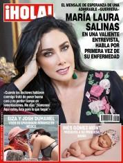 Item:com.hola.holamexico.597
